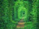 Екскурсійний тур: Перлини Волині + тунель кохання, 2 дні